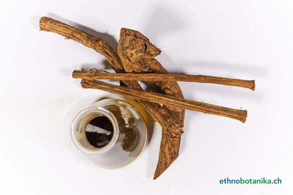 Banisteriopsis caapi Set 01