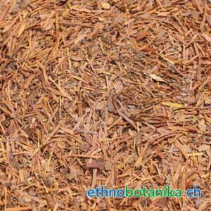 Handroanthus impetiginosus rohstoff 01