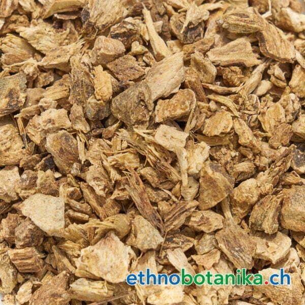 Inula helenium rohstoff 01