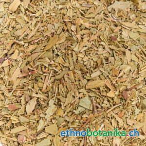 Myrtus communis rohstoff 01