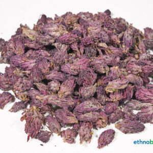 Pedicularis densiflora 01