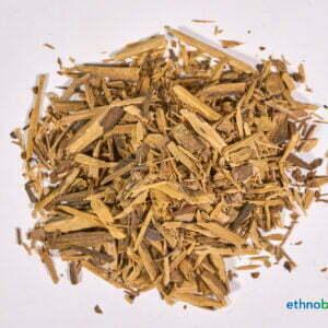 Ptychopetalum olacoides 01