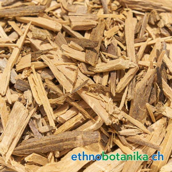 Ptychopetalum olacoides rohstoff 01