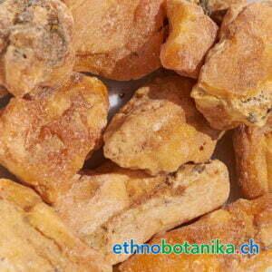 Styrax Benzoin rohstoff 01
