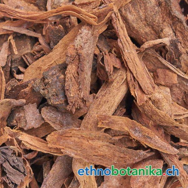 Styrax officinalis Rinde rohstoff 01