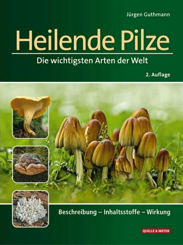 Heilende Pilze